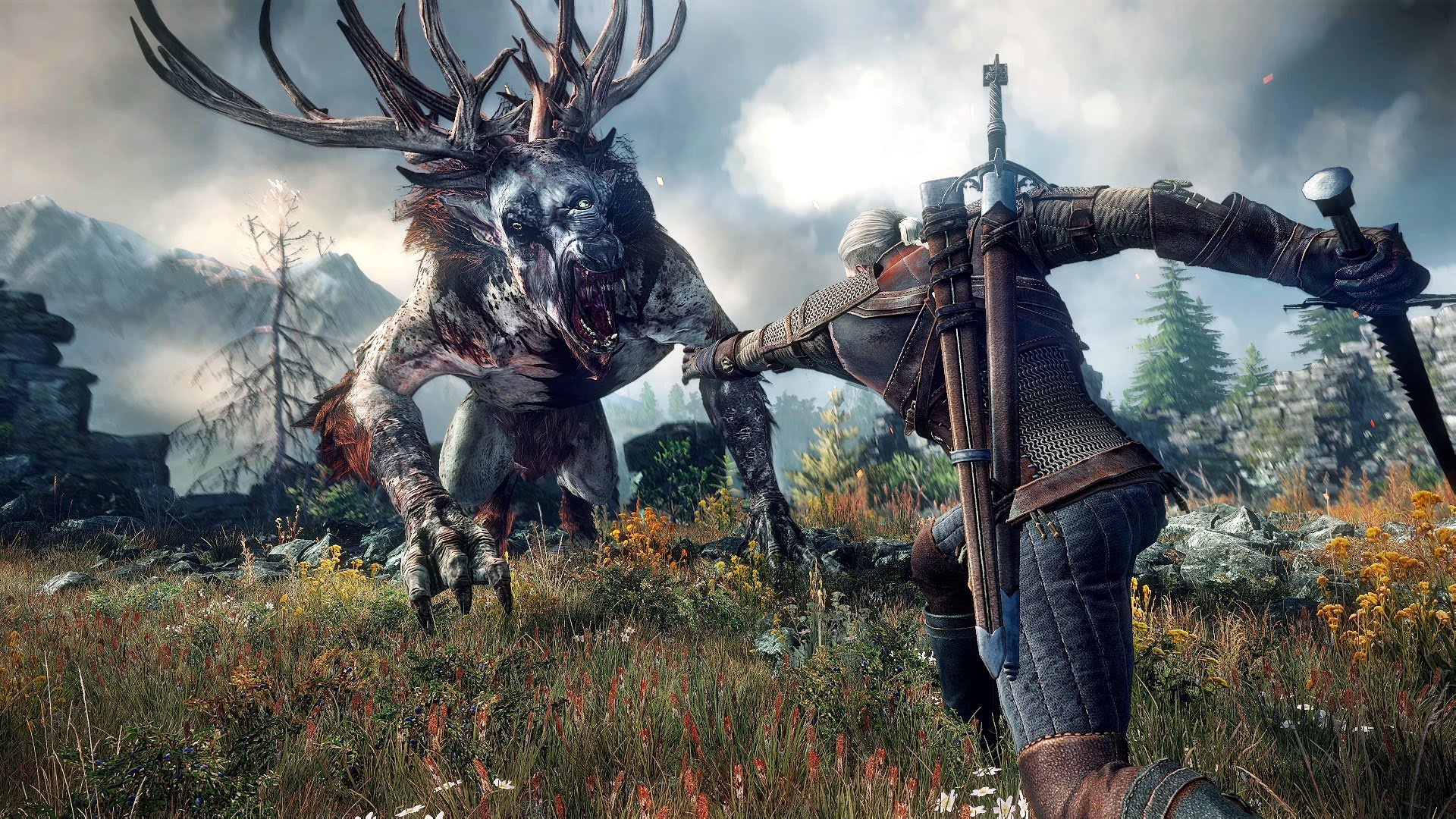 The Witcher 3 Wild Hunt (58)
